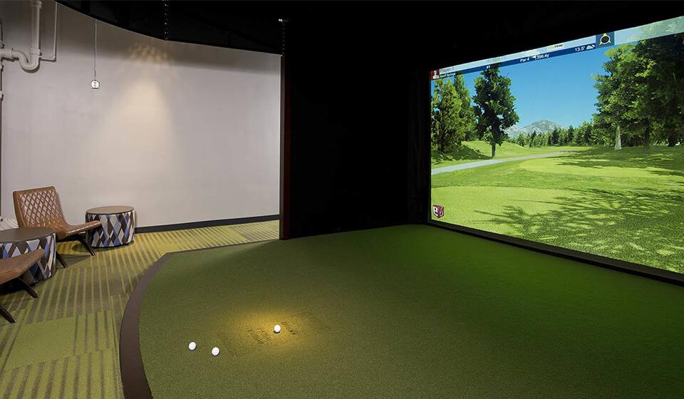 Премиум модель гольф симулятора